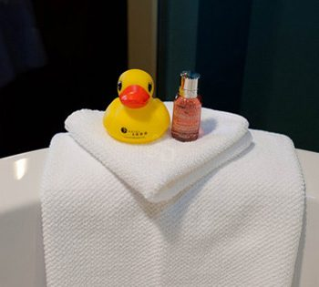 Radisson-Hotels-duck