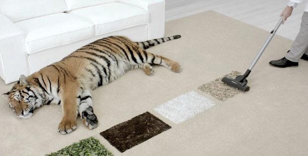 bosch-tiger