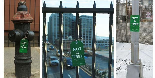 not-a-tree-banner