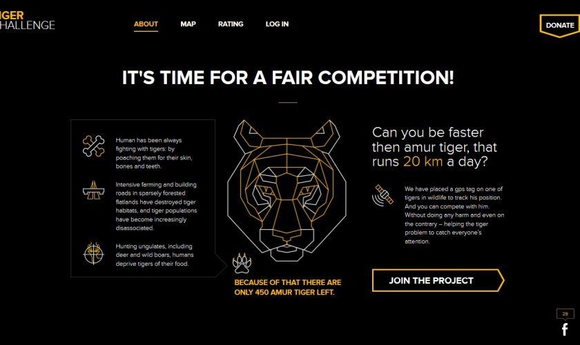Tiger-Challenge_5-1