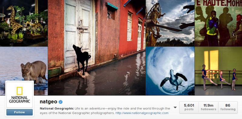 نشنال جئوگرافیک برترین برند در شبکههای اجتماعی ۱