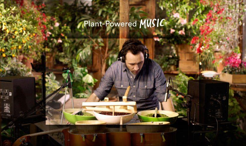 plantPoweredMusic_bkgd_1600x1113