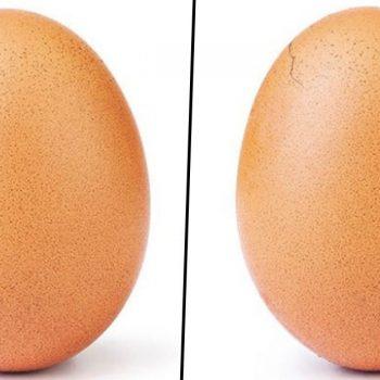 تخم مرغ اینستاگرام