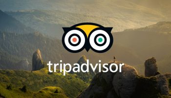 tripadvisor-creative-agency-mother-CONTENT-2019
